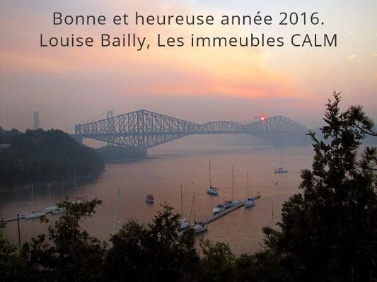 Bonne 2016 louise